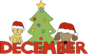 Auto Transport Tips in December by Direct Express