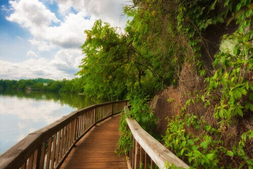 In Knoxville, Tennessee, Ijam Nature Park boardwalk built along the Tennessee River